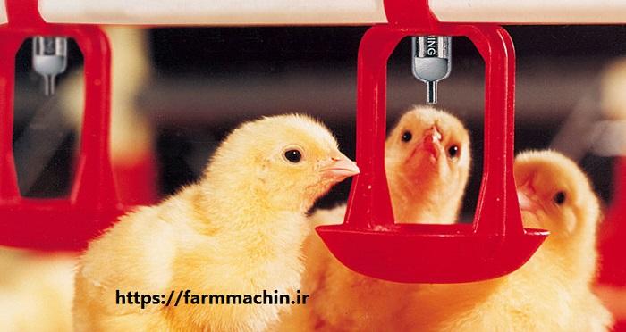 قیمت آبخوری نیپل مرغ