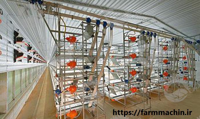 تولید کننده تجهیزات مرغداری