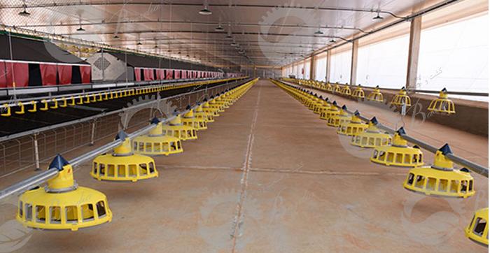 ساخت دانخوری برای مرغ