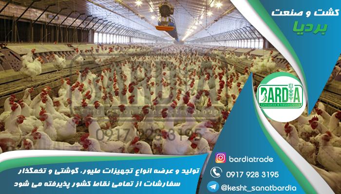 قیمت آبخوری مرغ